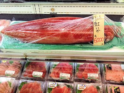 a.cattlefish.jpg